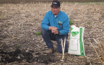 Phosphorous and Potassium nutrient stratification in no-till