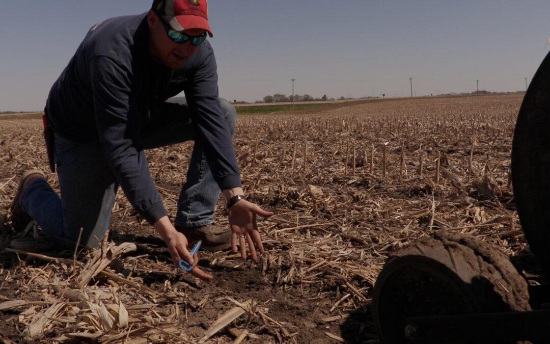 2021-spring-planting-review-behind-bt-chopper-corn-cutting