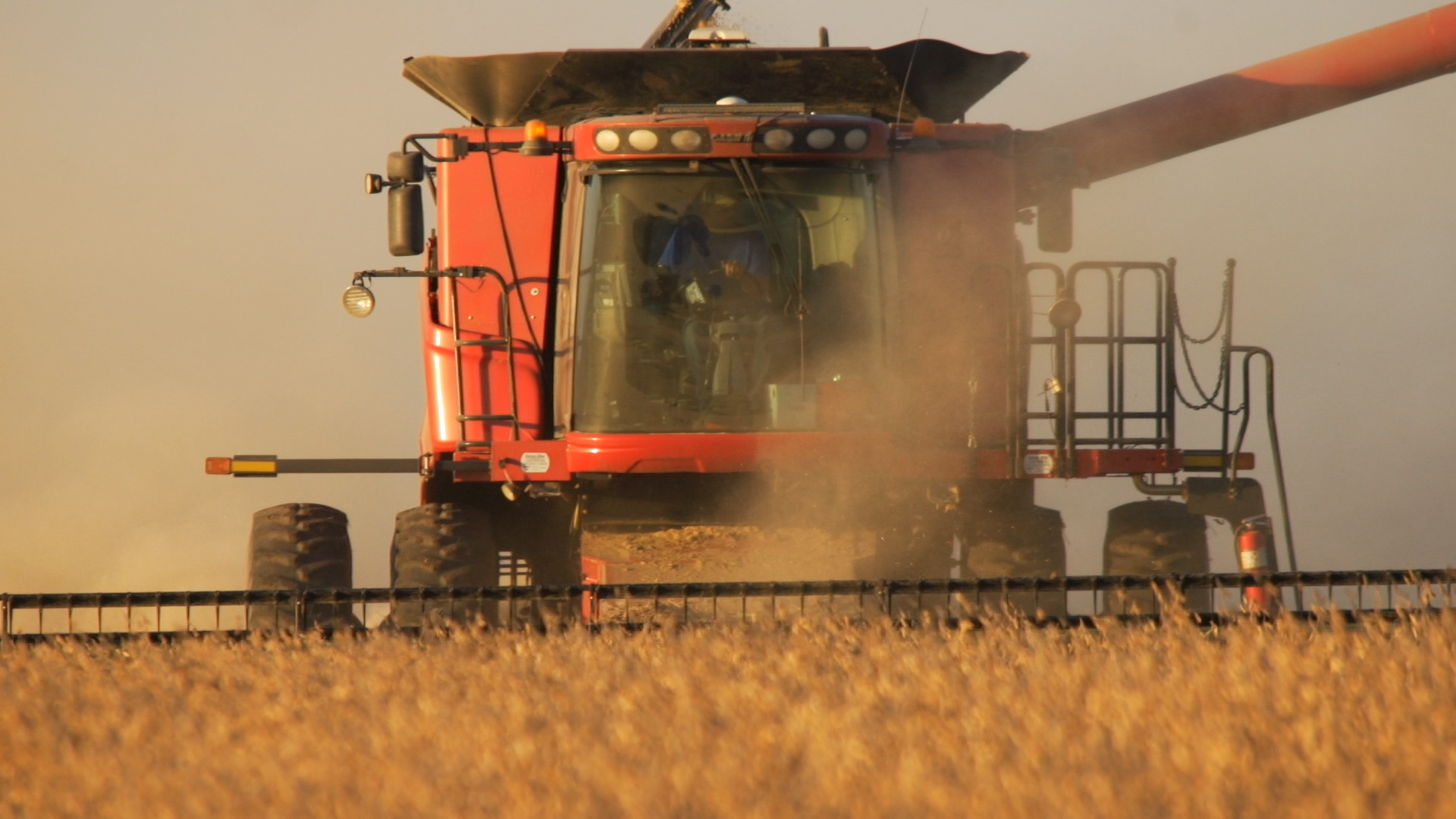 combine settings for soybean harvesting